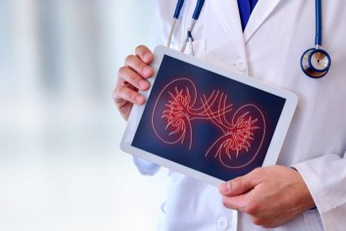 Organ Donation & Treatment